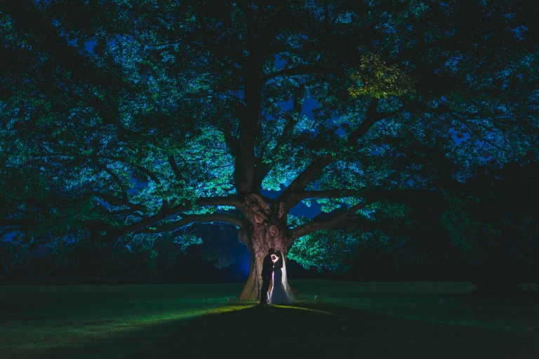 Bride and groom silhouette against a tree